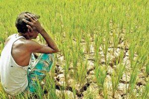 affect of loan waving on farmers